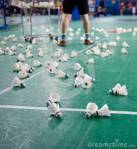 cours-de-badminton-32603210